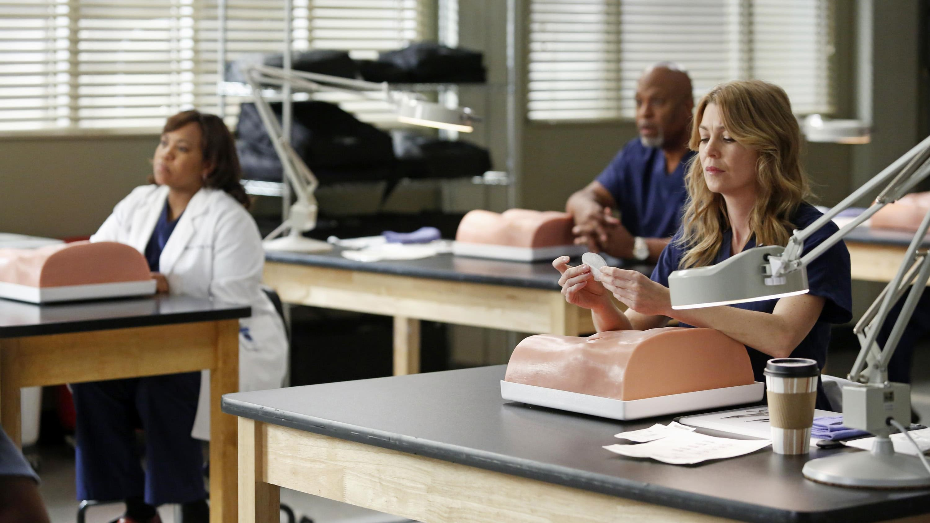 Grey's Anatomy Season 9 :Episode 13  Böses Blut