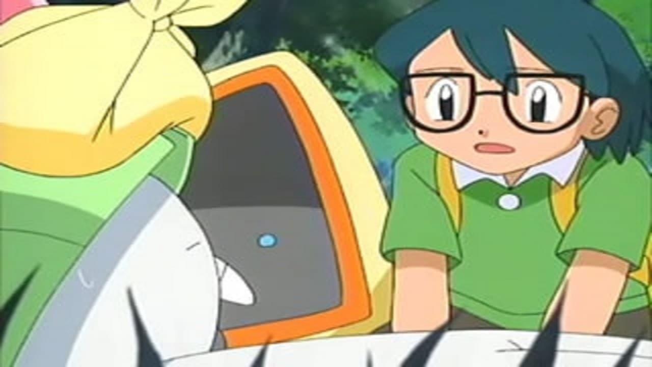 Pokémon Season 8 :Episode 17  Do I Hear a Ralts?