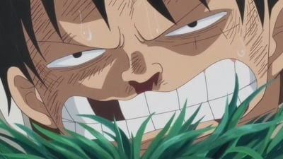 One Piece Season 19 :Episode 811  I'll Wait Here! Luffy vs.the Enraged Army!