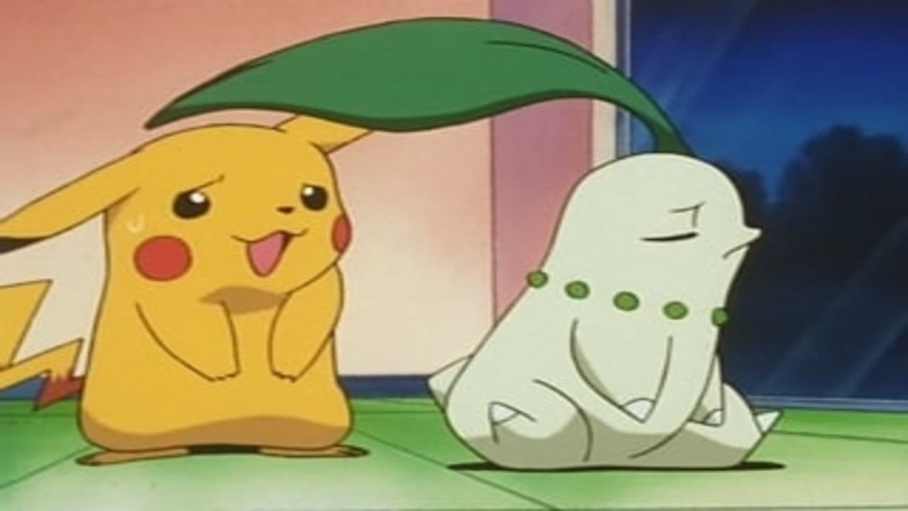 Pokémon Season 3 :Episode 20  Chikorita's Big Upset