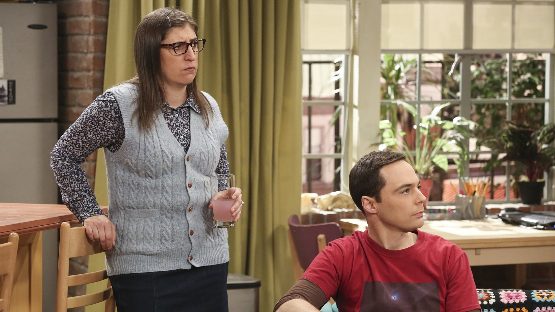 The Big Bang Theory Season 11 :Episode 17  The Athenaeum Allocation