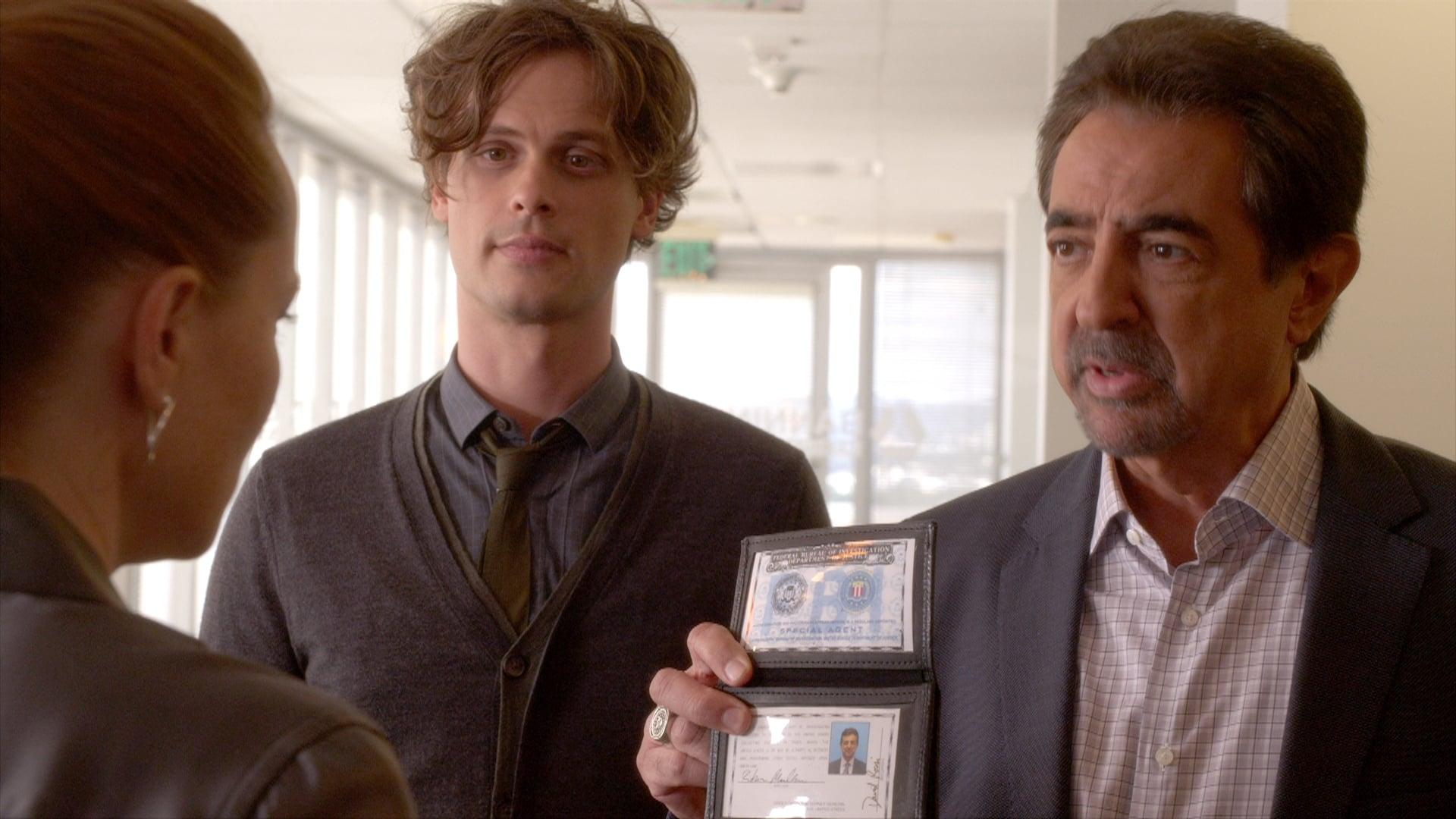 Criminal Minds Season 11 :Episode 2  The Witness