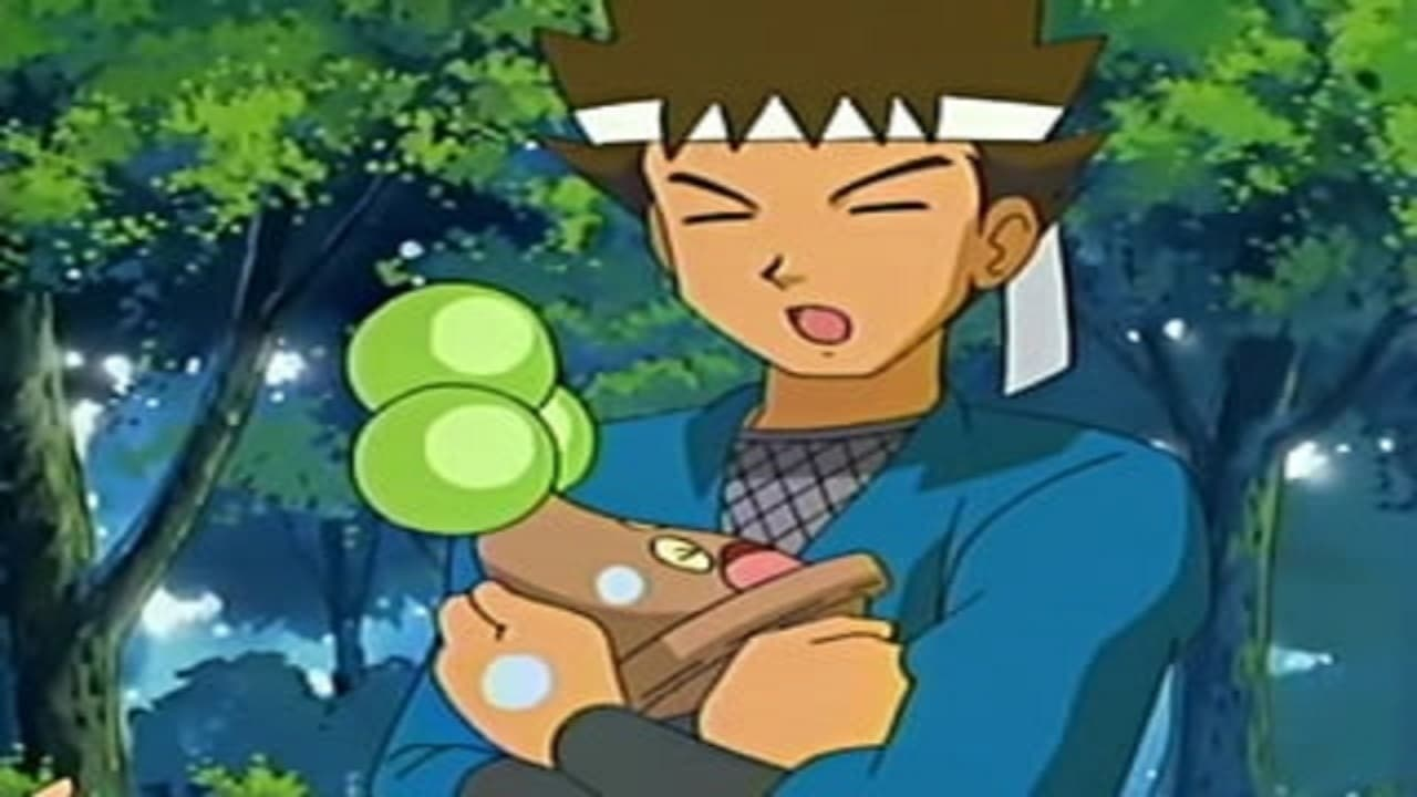 Pokémon Season 9 :Episode 11  From Cradle to Save!
