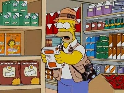 The Simpsons Season 18 :Episode 16  Homerazzi