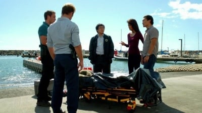 Hawaii Five-0 - Season 2 Episode 8 : Healing