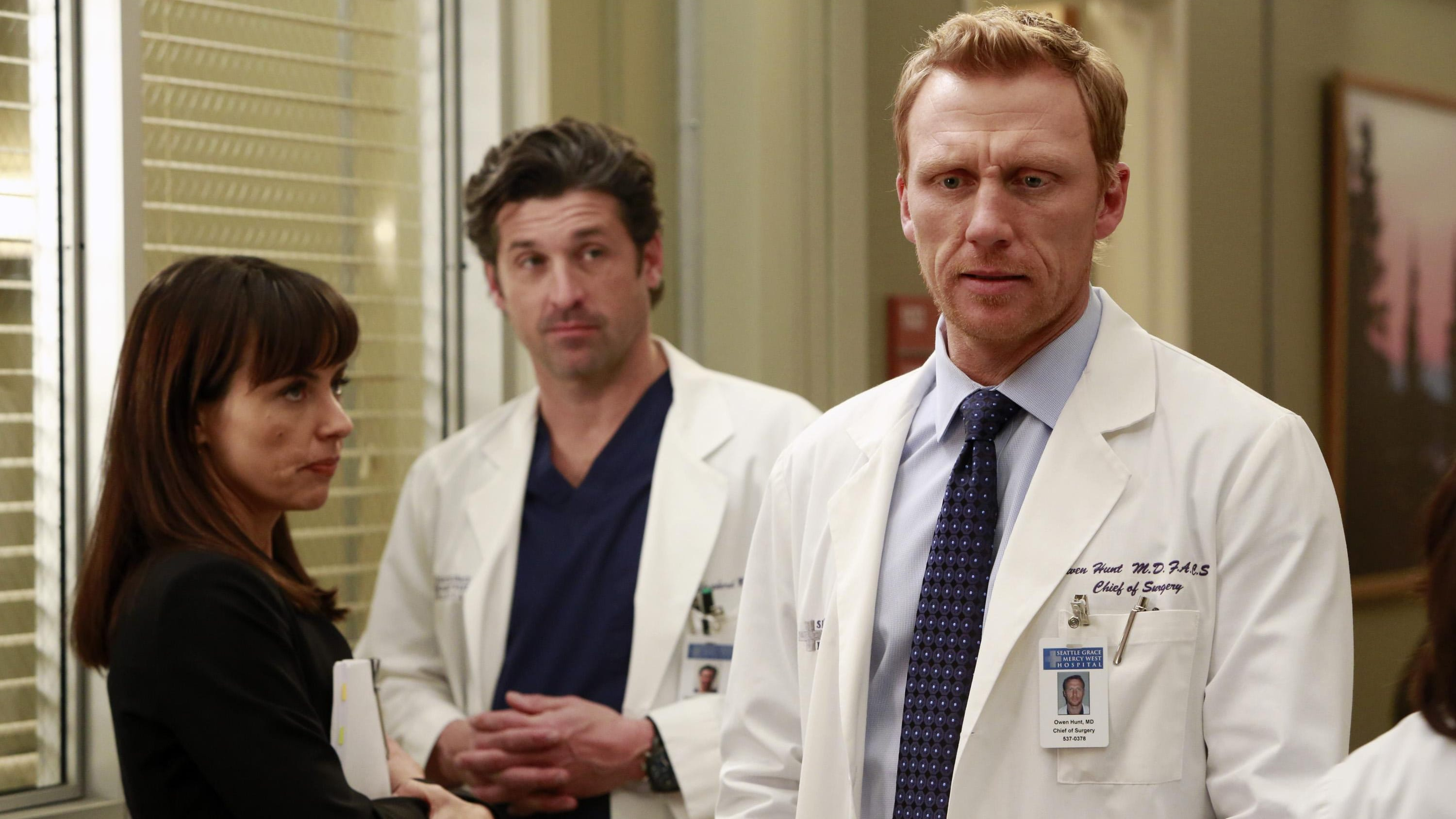 Grey's Anatomy Season 9 :Episode 15  Harte Bandagen