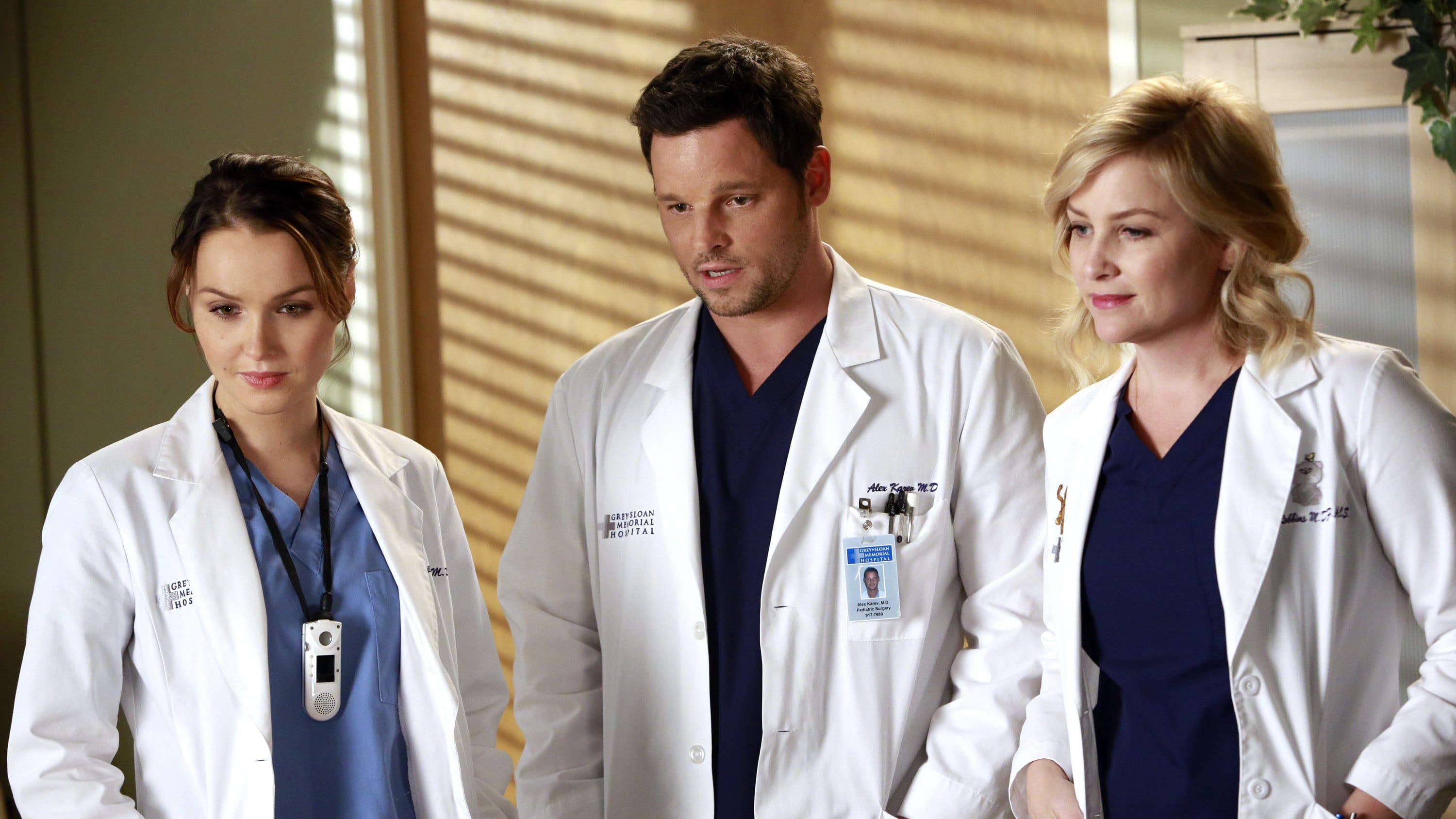 Grey's Anatomy Season 10 :Episode 15  Was wir entsorgen