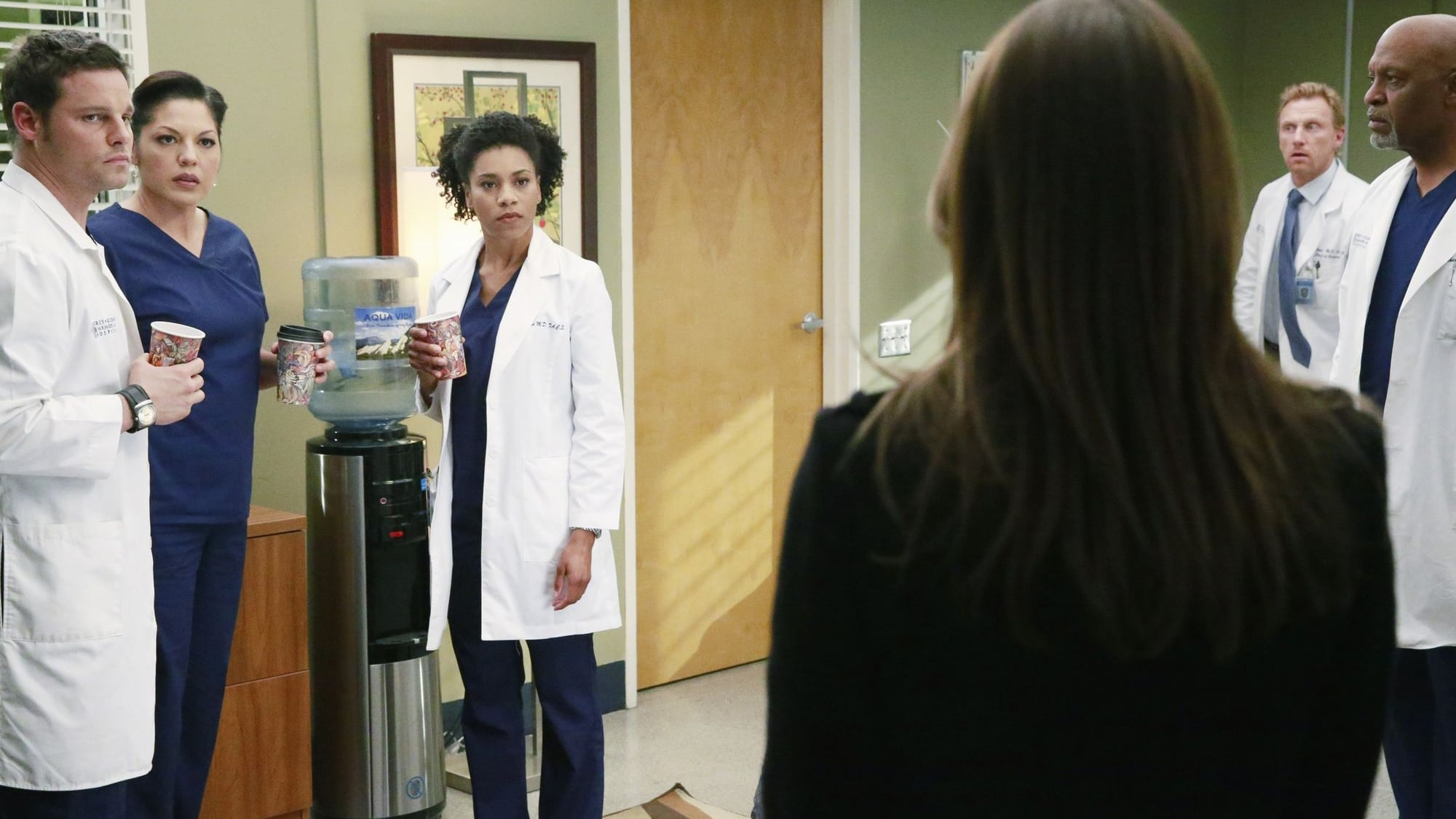 Grey's Anatomy Season 11 :Episode 22  She's Leaving Home