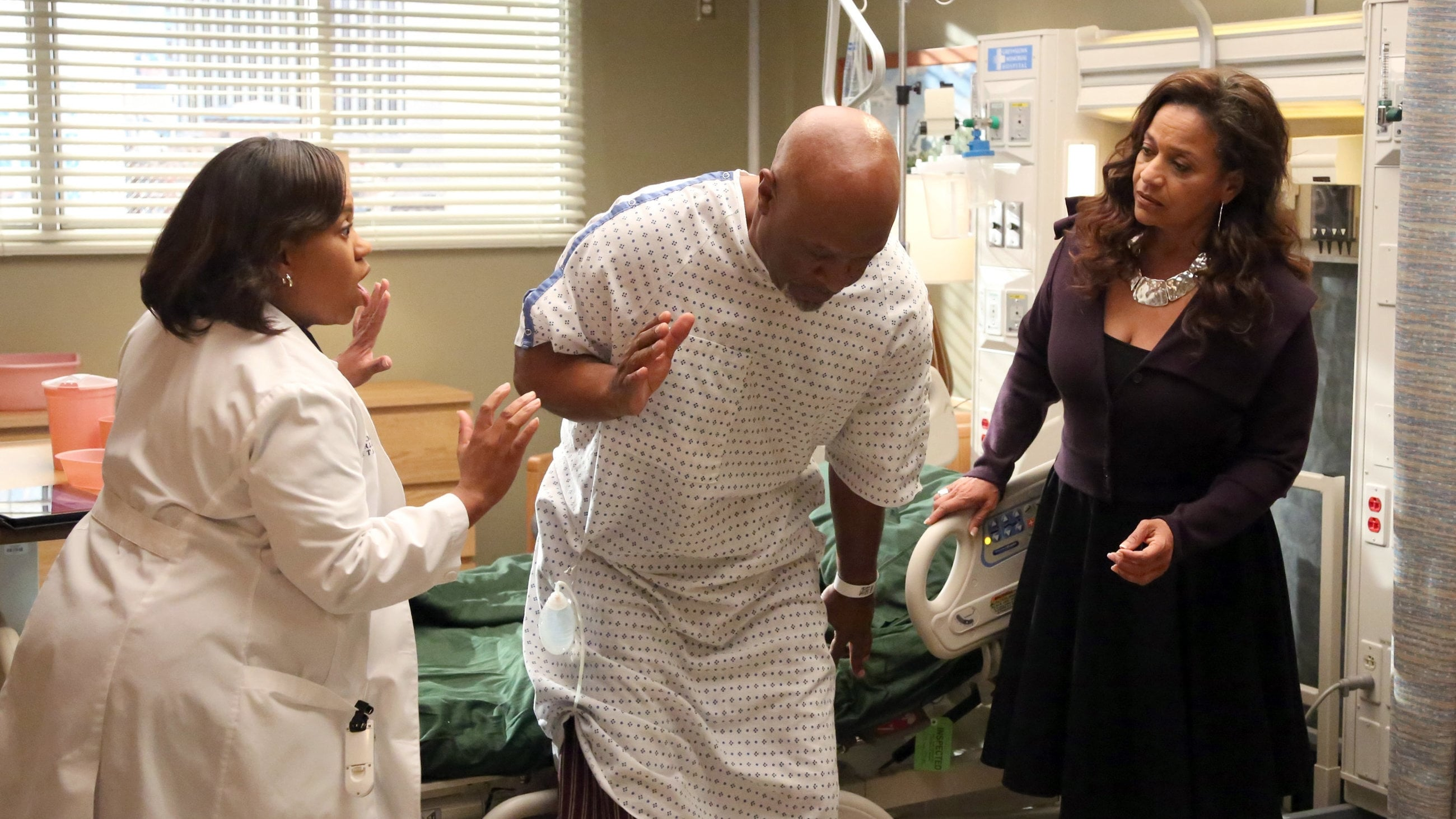 Grey's Anatomy - Season 10 Episode 5 : I Bet It Stung