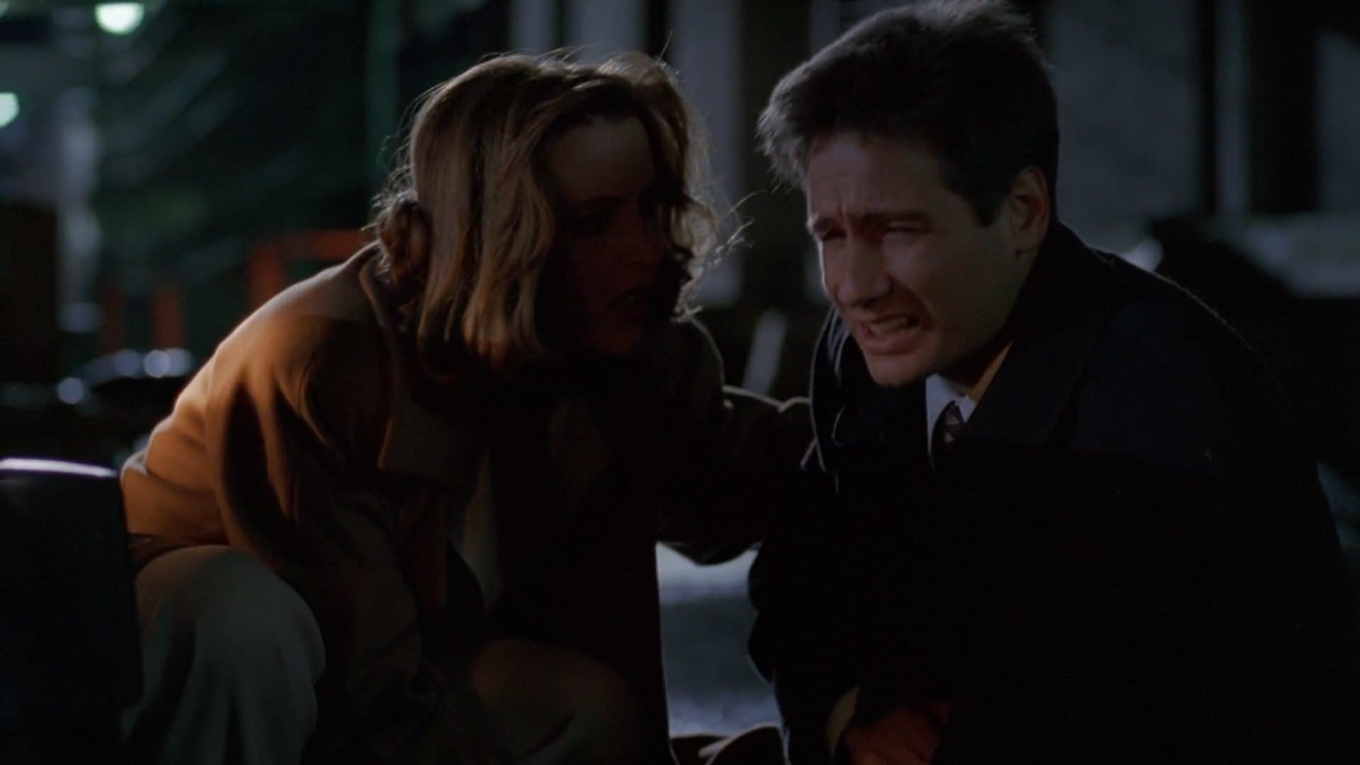 The X-Files Season 2 :Episode 16  Colony