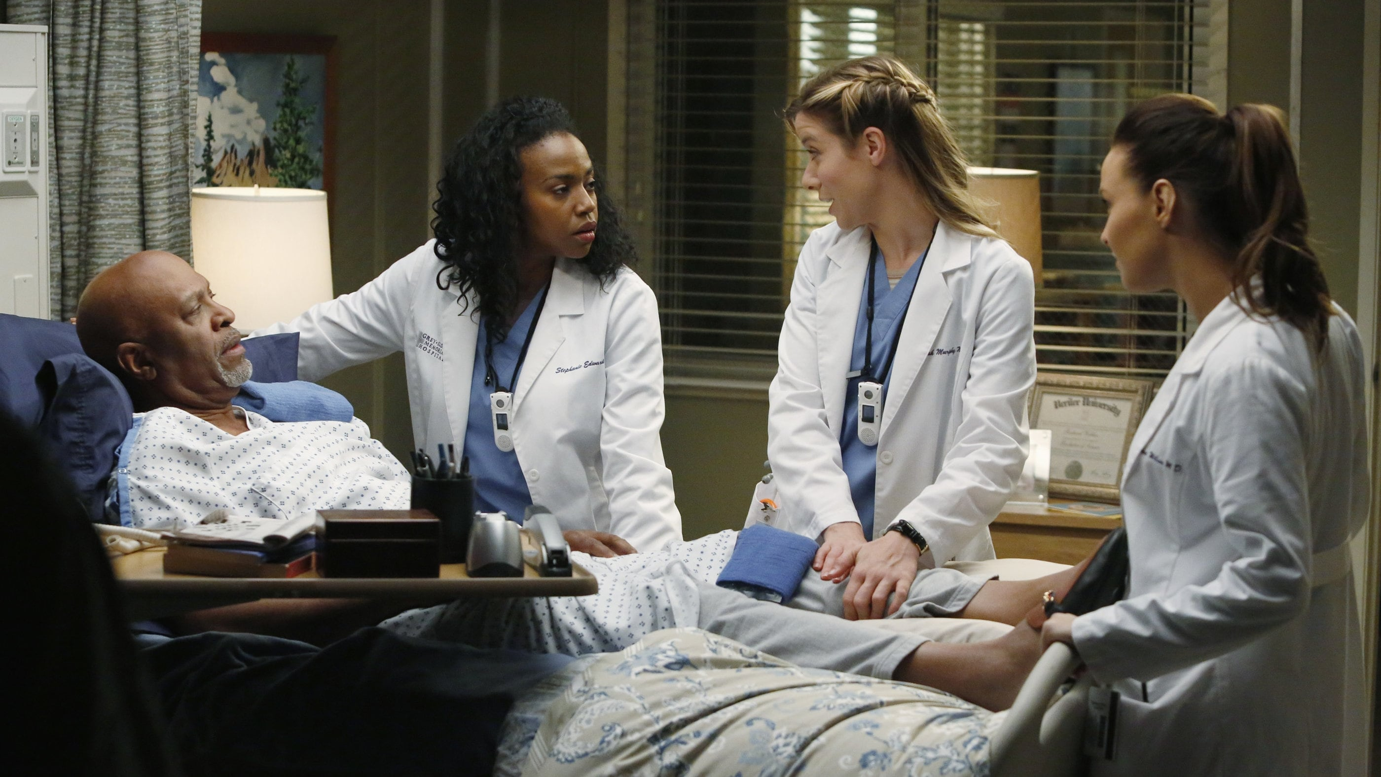 Grey's Anatomy Season 10 :Episode 10  Klare Worte