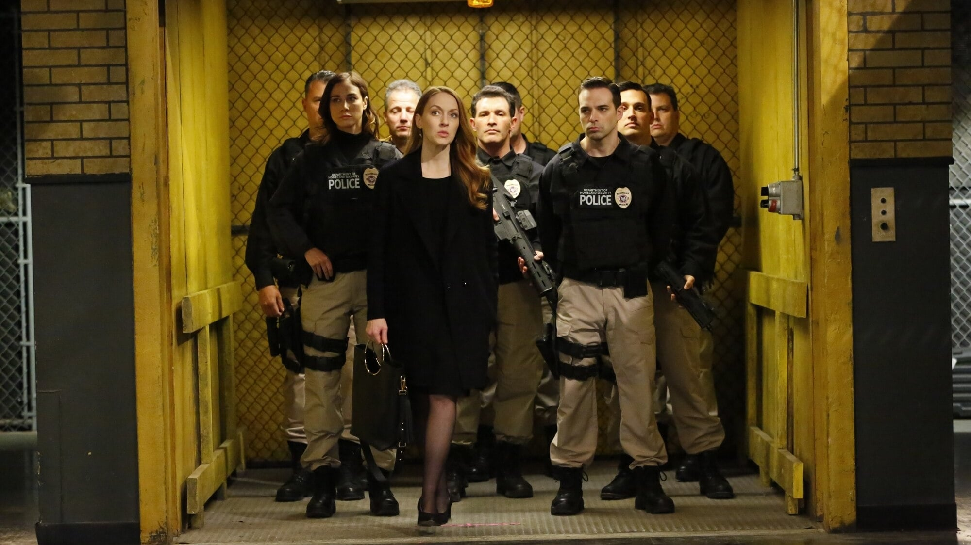 The Blacklist Season 6 :Episode 21  Anna McMahon