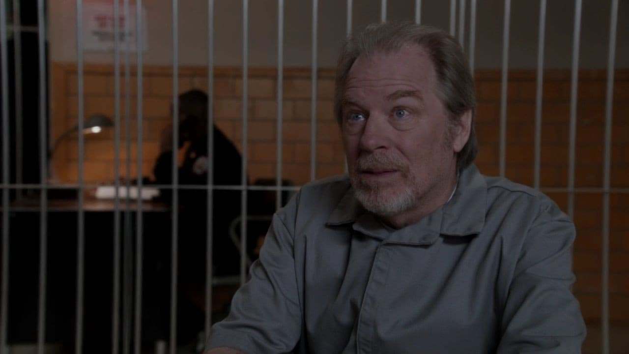 Law & Order: Special Victims Unit Season 13 :Episode 13  Father's Shadow
