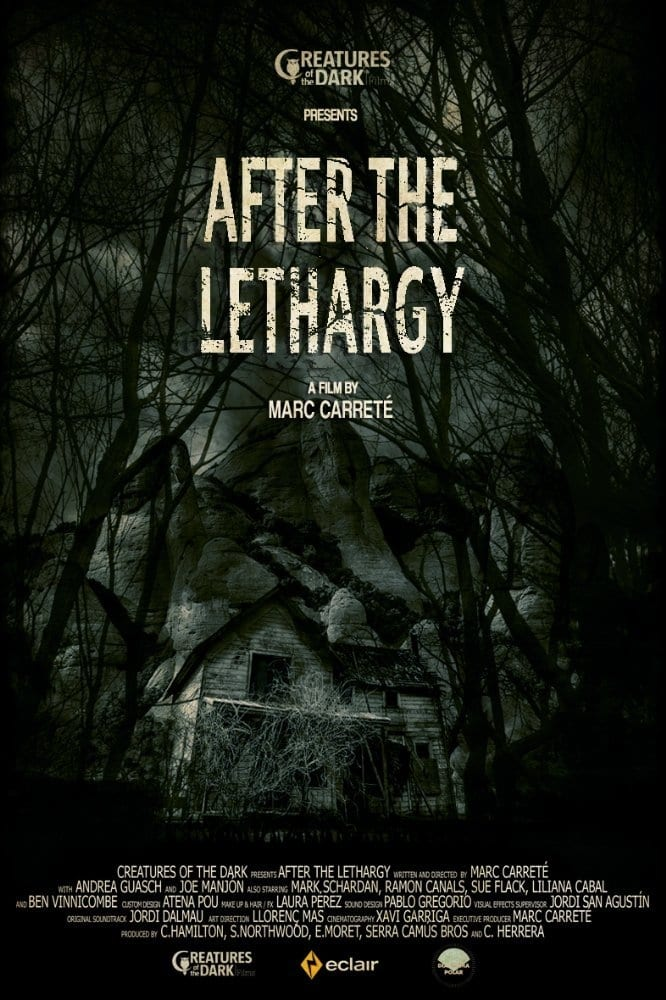 image for After the Lethargy