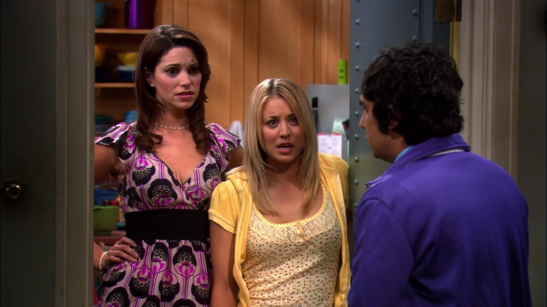 The Big Bang Theory Season 1 :Episode 15  The Pork Chop Indeterminacy