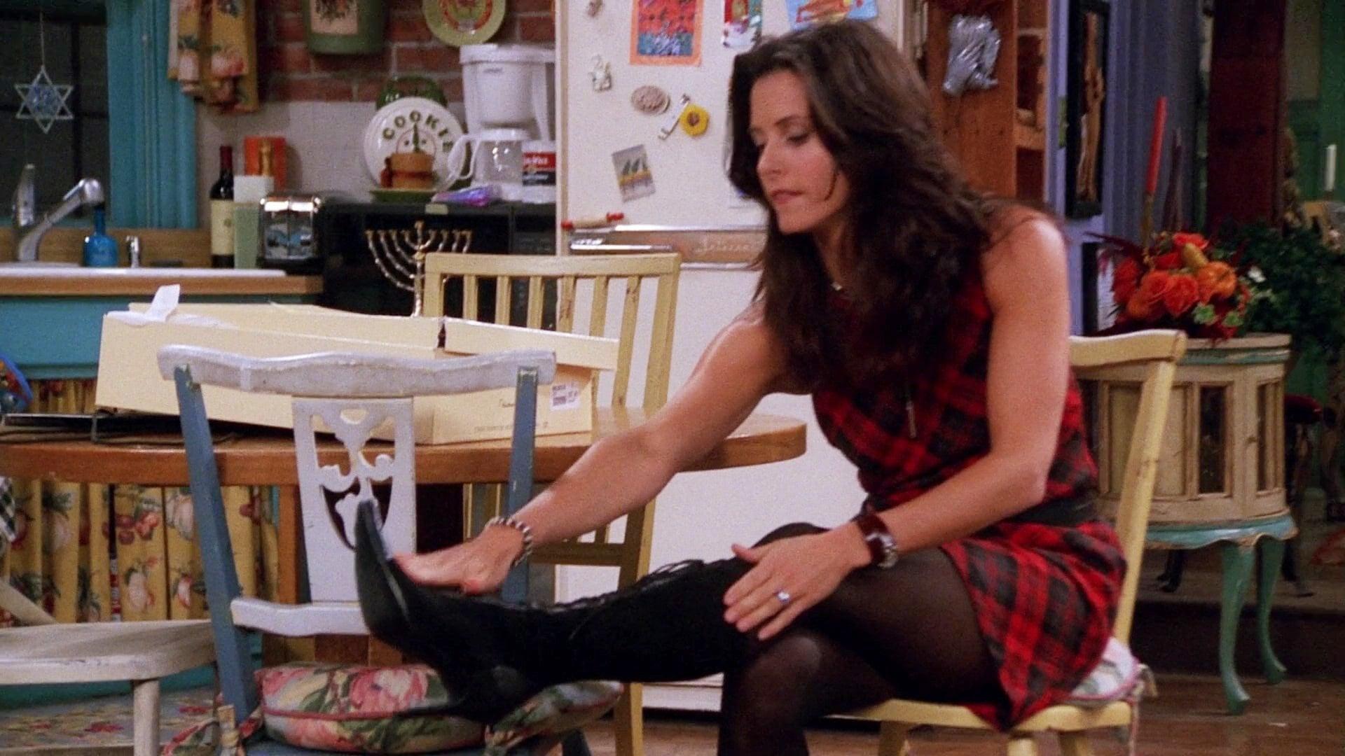 Season 8 :Episode 10  The One with Monica's Boots