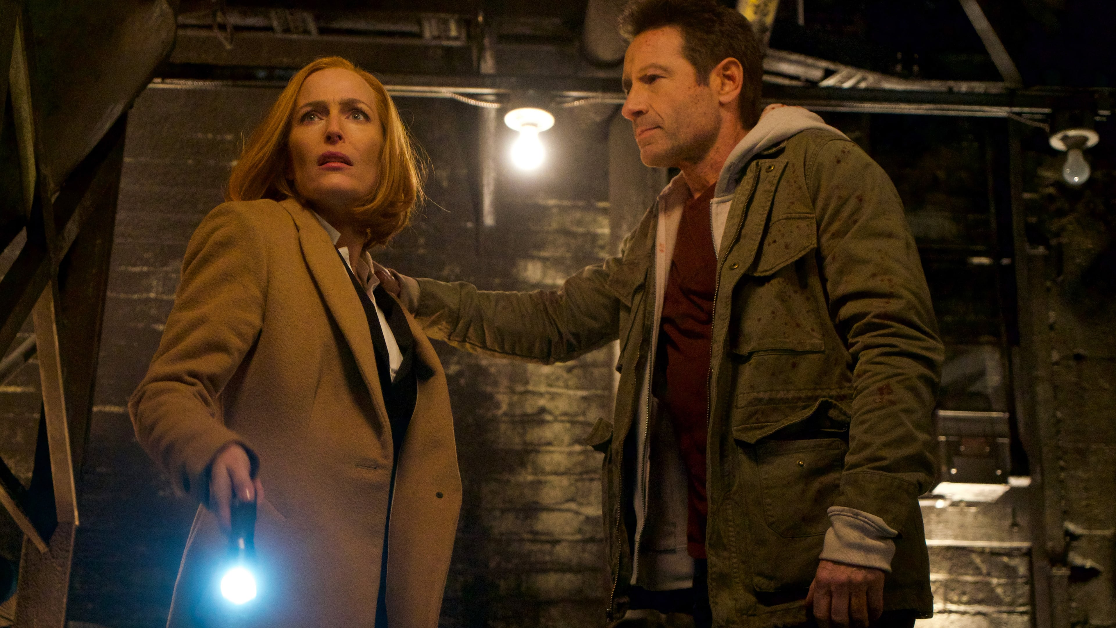 The X-Files Season 11 :Episode 10  My Struggle IV