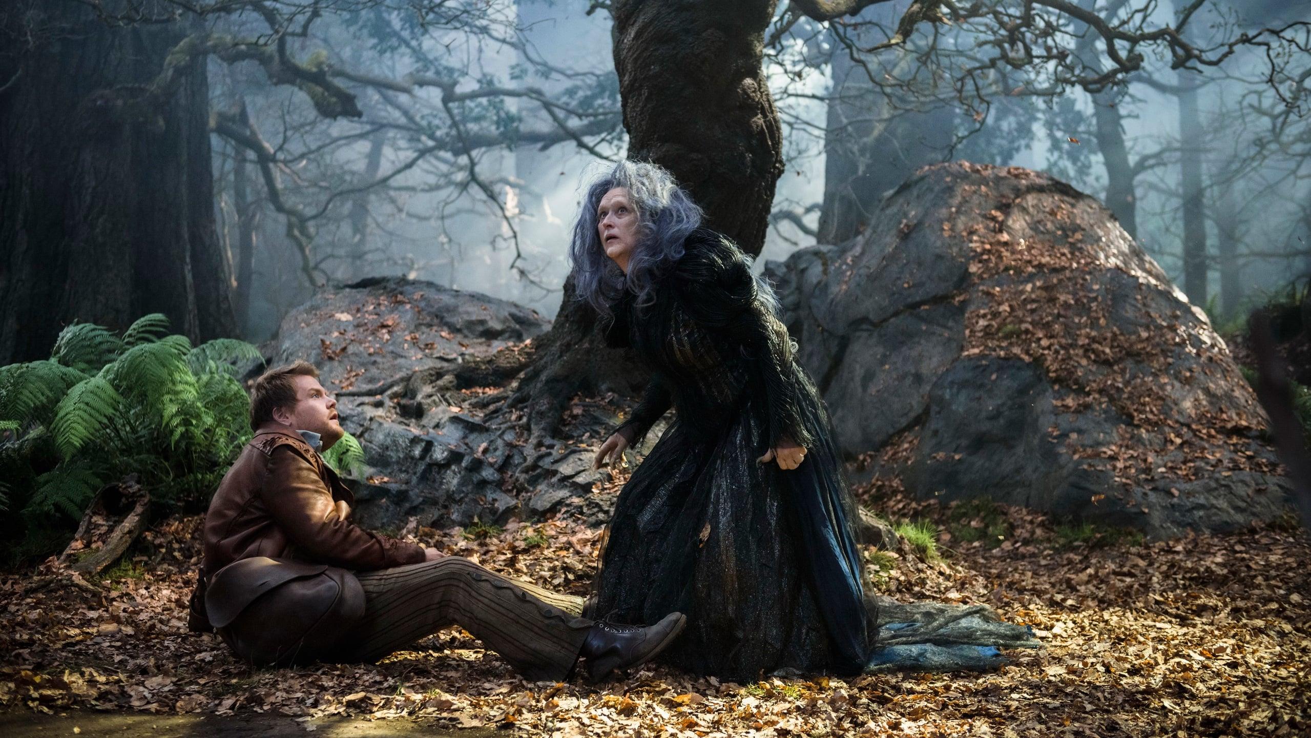 魔法黑森林资源 图片合集图片
