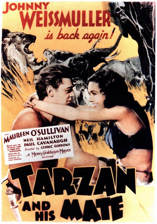 Tarzan of The Apes Movie Movie Posters Tarzan And His