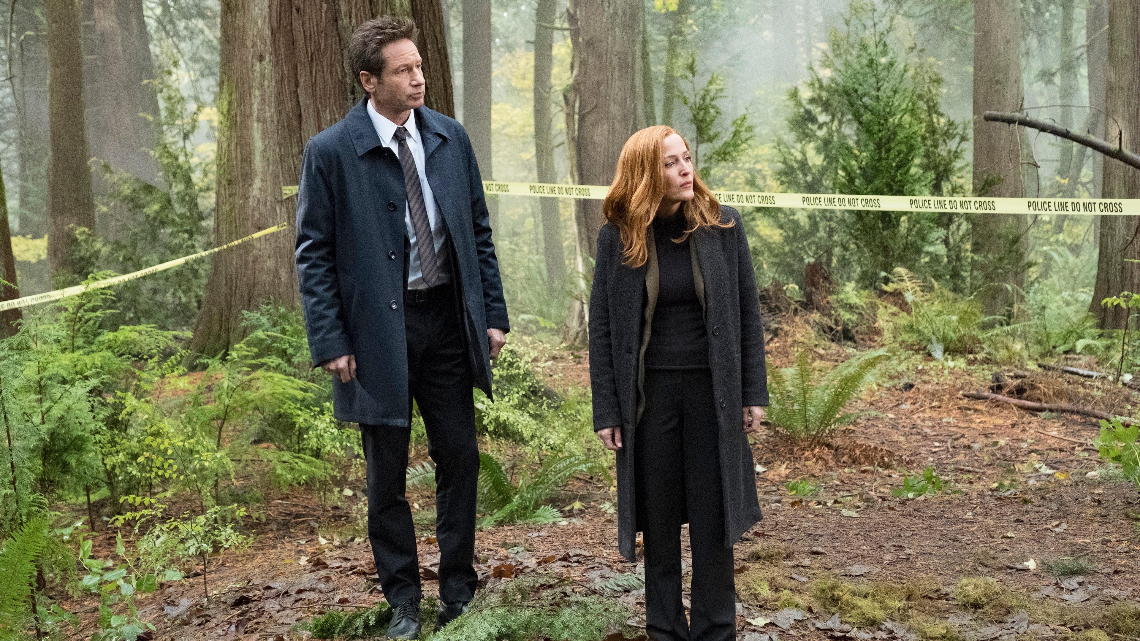 The X-Files Season 11 :Episode 6  Kitten