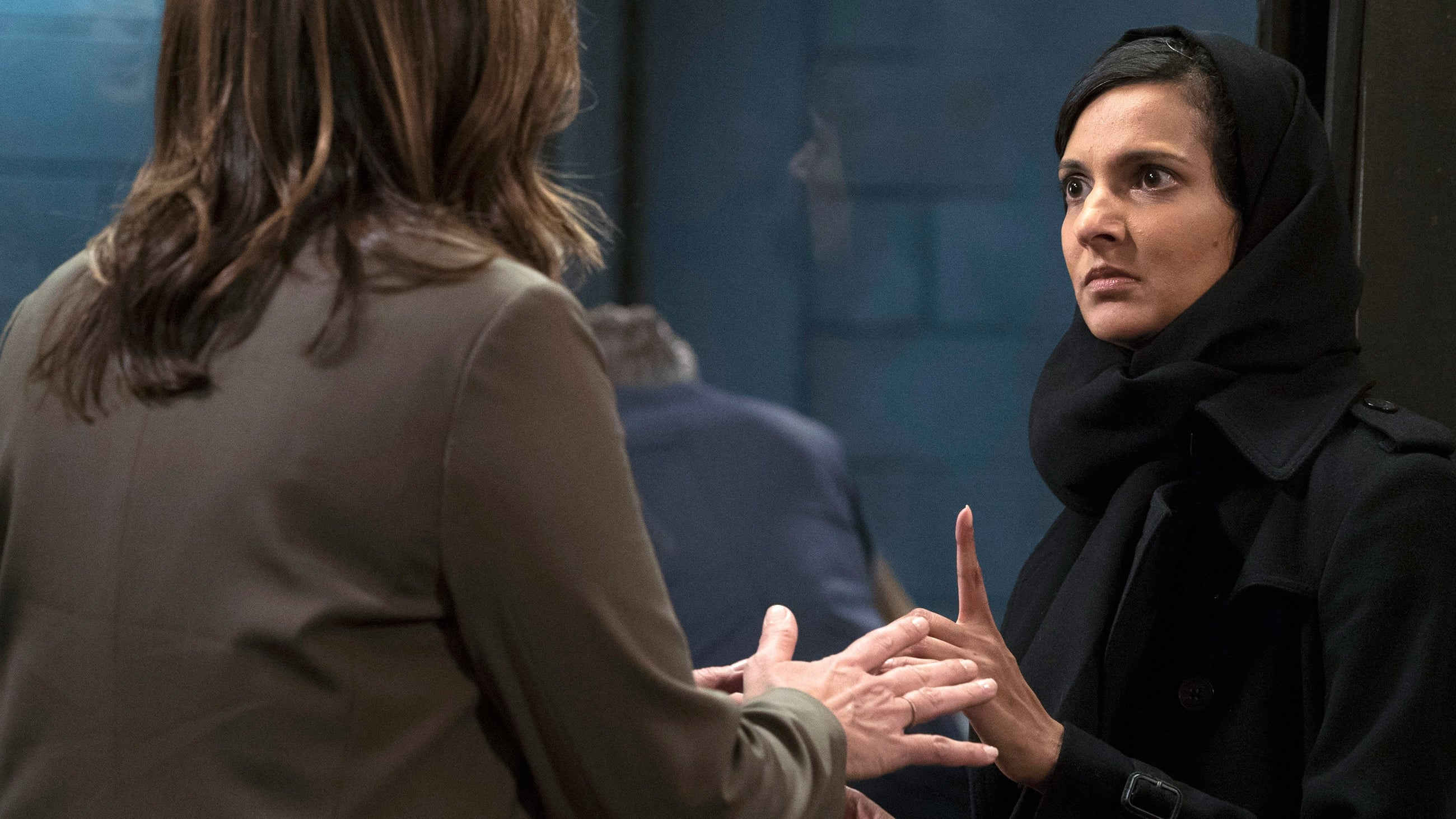 Law & Order: Special Victims Unit Season 18 :Episode 20  American Dream (1)