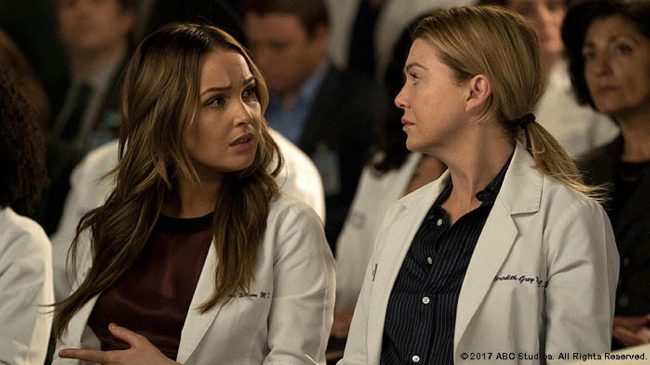 Grey's Anatomy Season 14 :Episode 20  Judgement Day