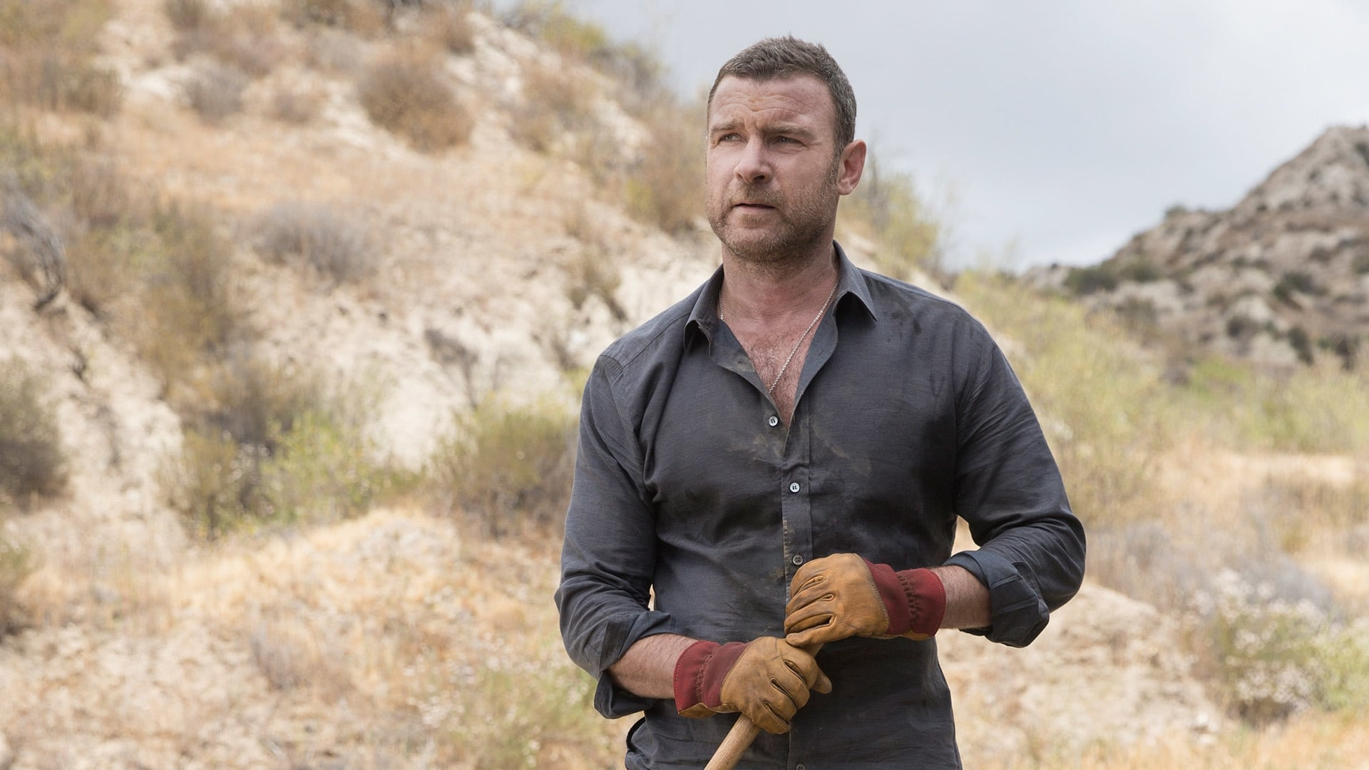 ray donovan 2013 saison 3 pisode 8 filmstreaming hd com. Black Bedroom Furniture Sets. Home Design Ideas