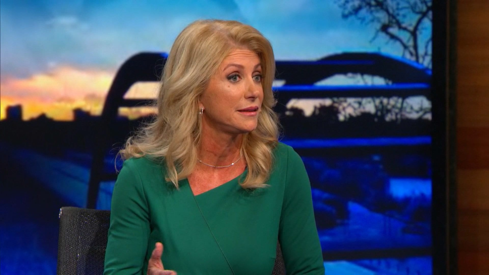 The Daily Show with Trevor Noah Season 20 :Episode 13  Wendy Davis