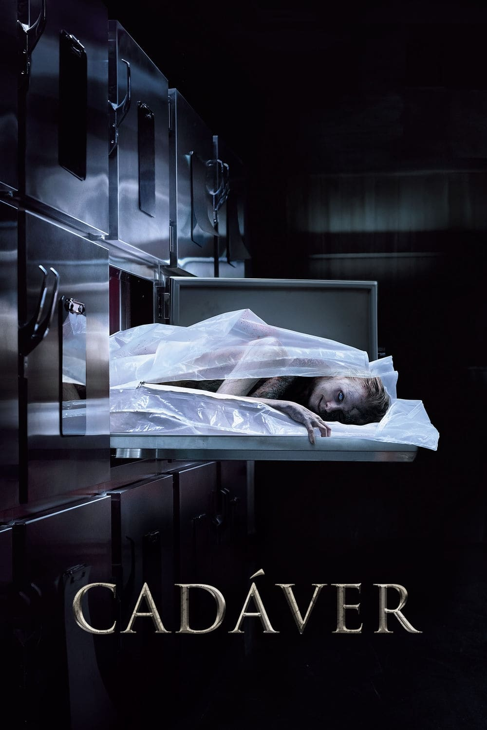 Cadáver (2019) Torrent - BluRay 720p e 1080p Dublado / Dual Áudio 5.1 Download