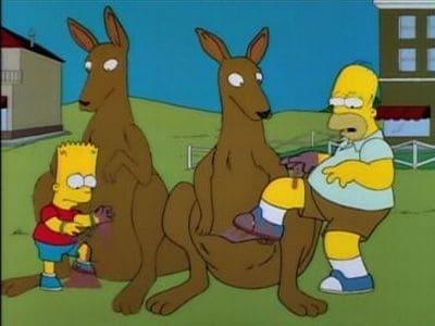 The Simpsons - Season 6 Episode 16 : Bart vs. Australia