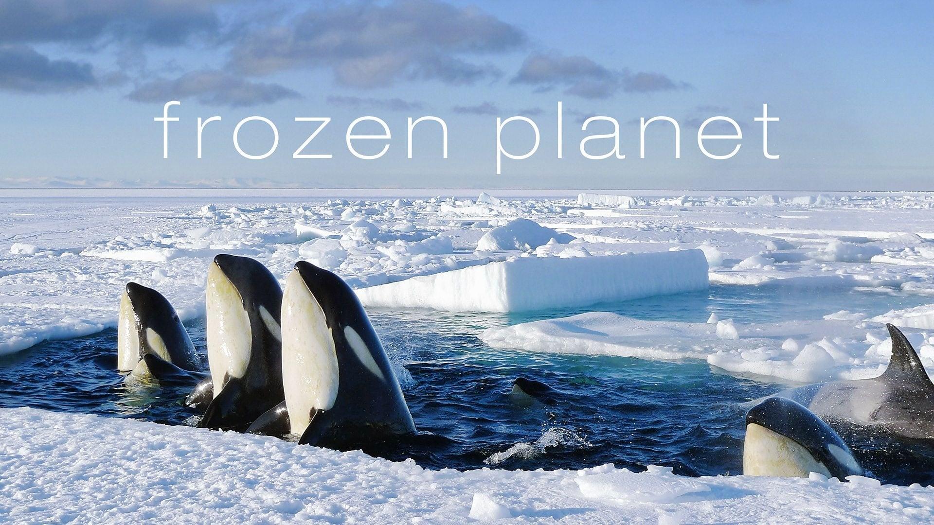 Frozen Planet