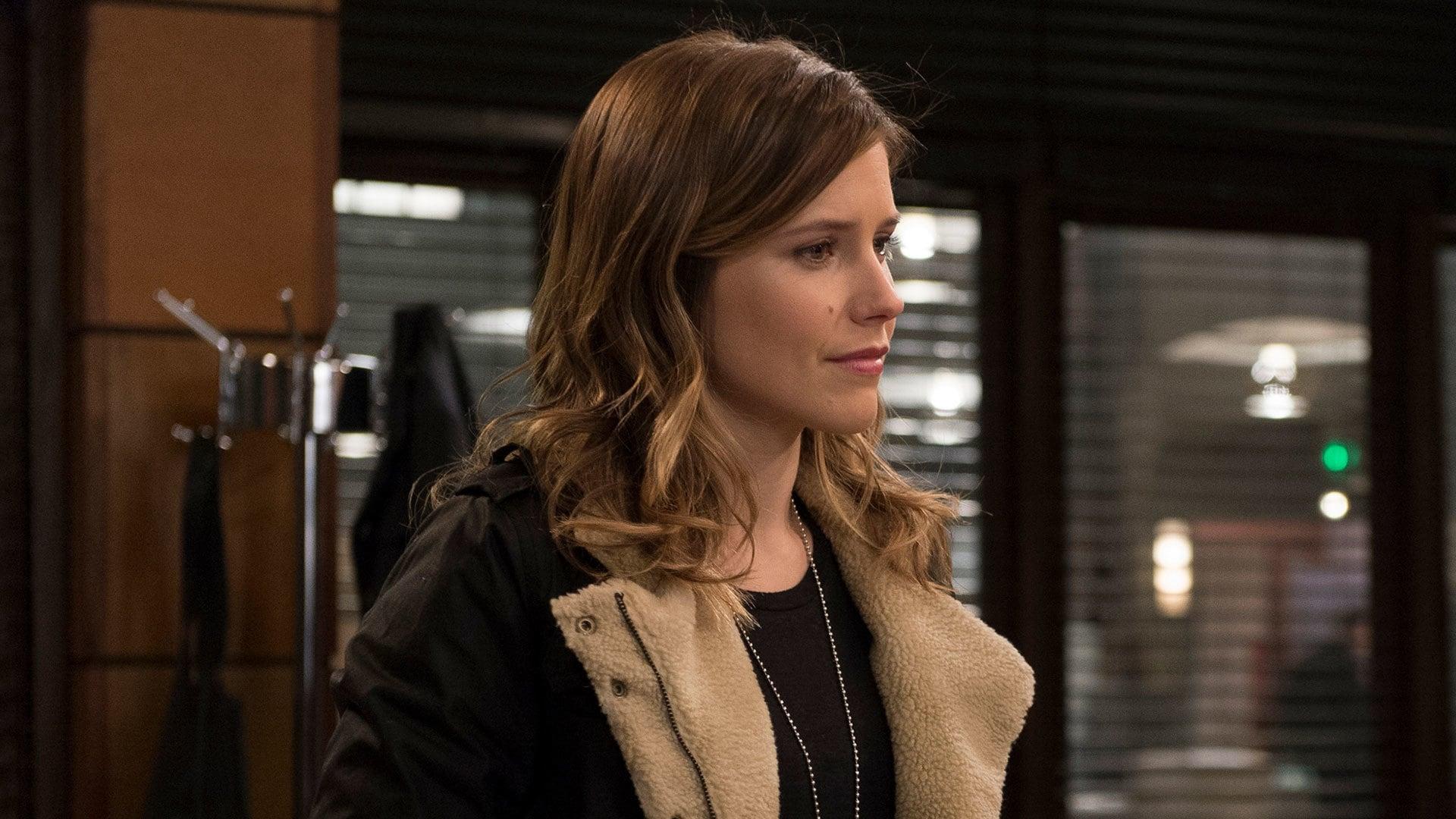 Law & Order: Special Victims Unit Season 15 :Episode 15  Comic Perversion