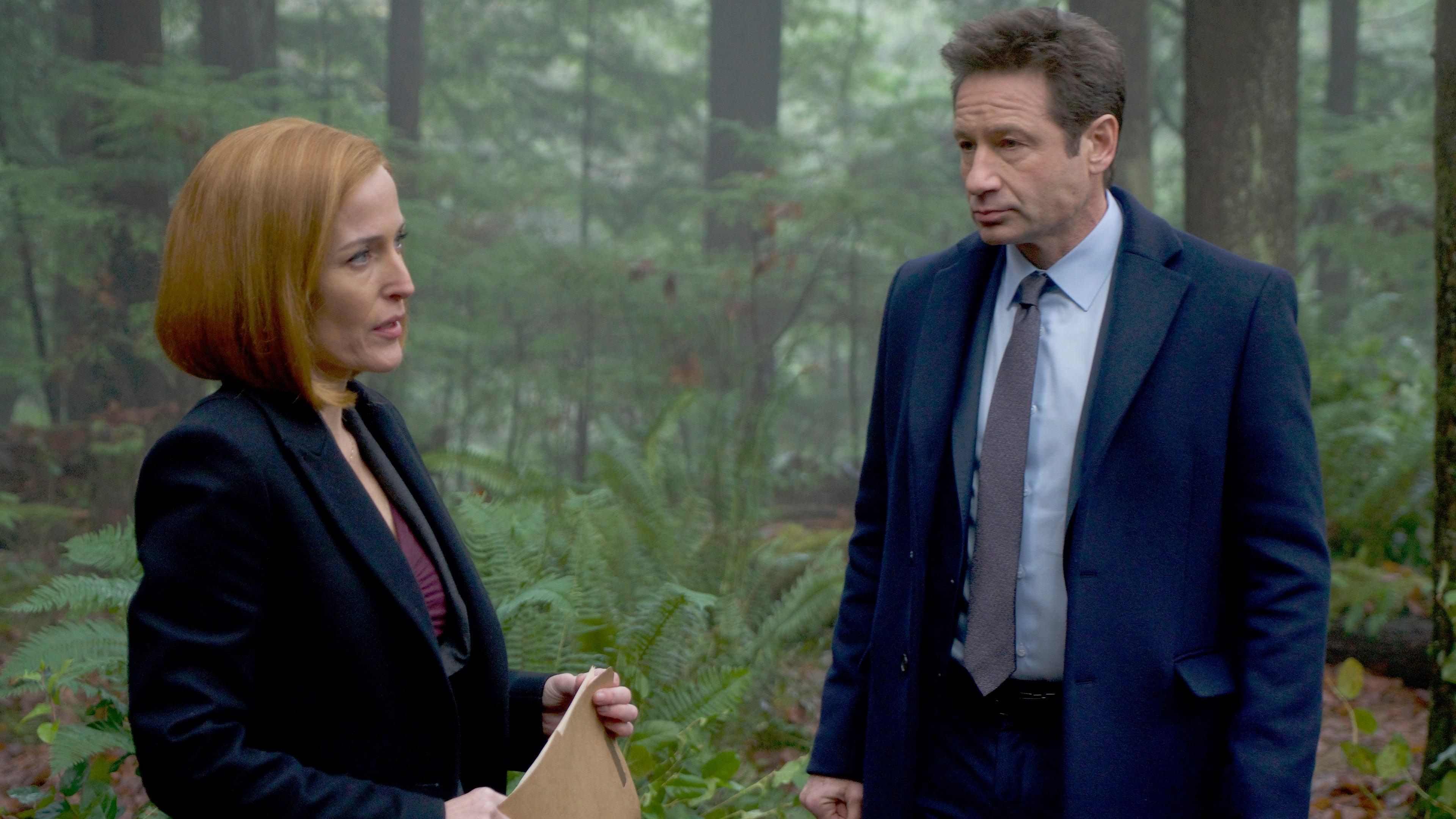 The X-Files Season 11 :Episode 8  Familiar