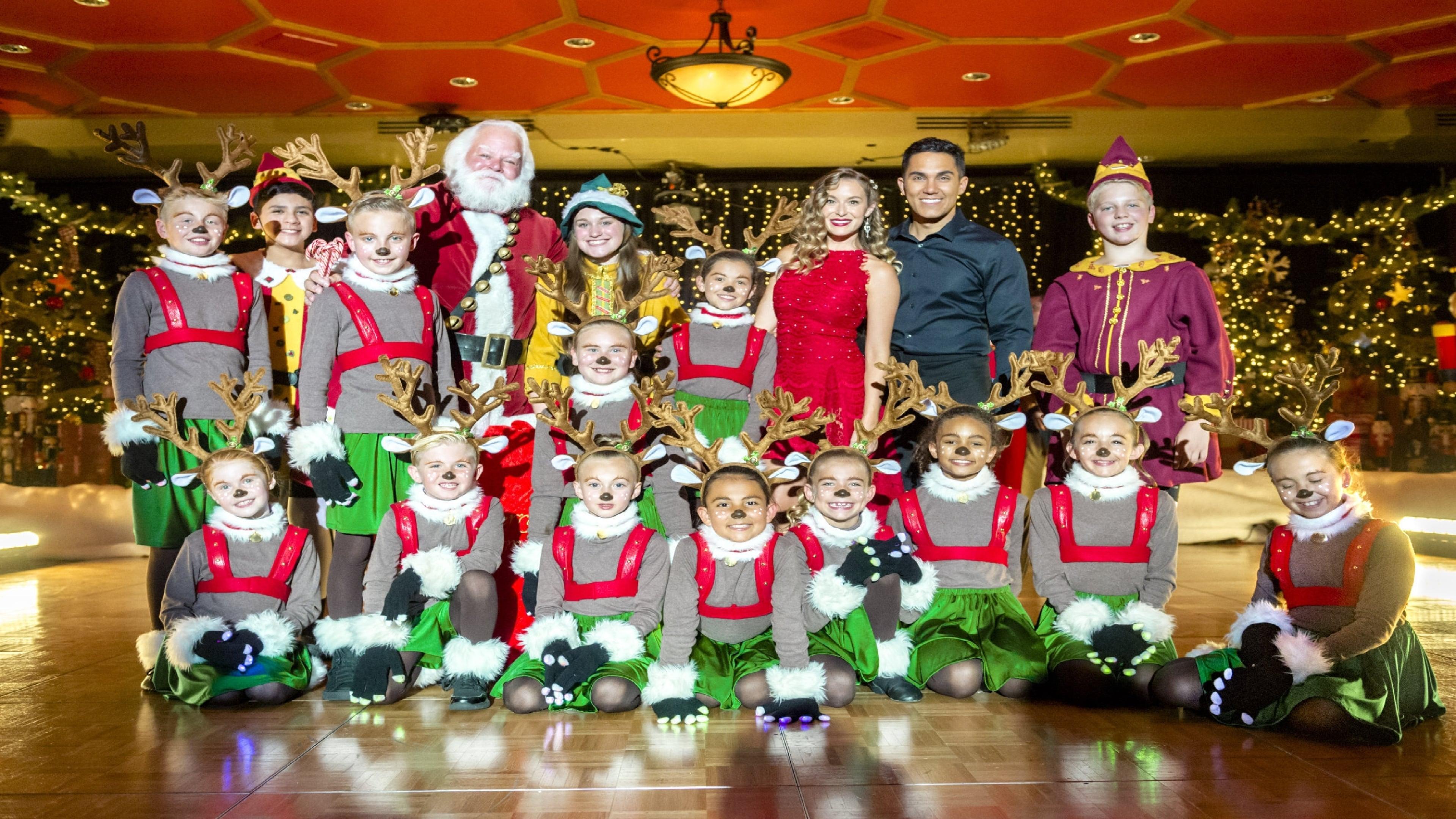 enchanted christmas westonbirt 2018