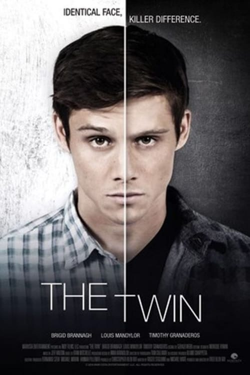 Póster The Twin