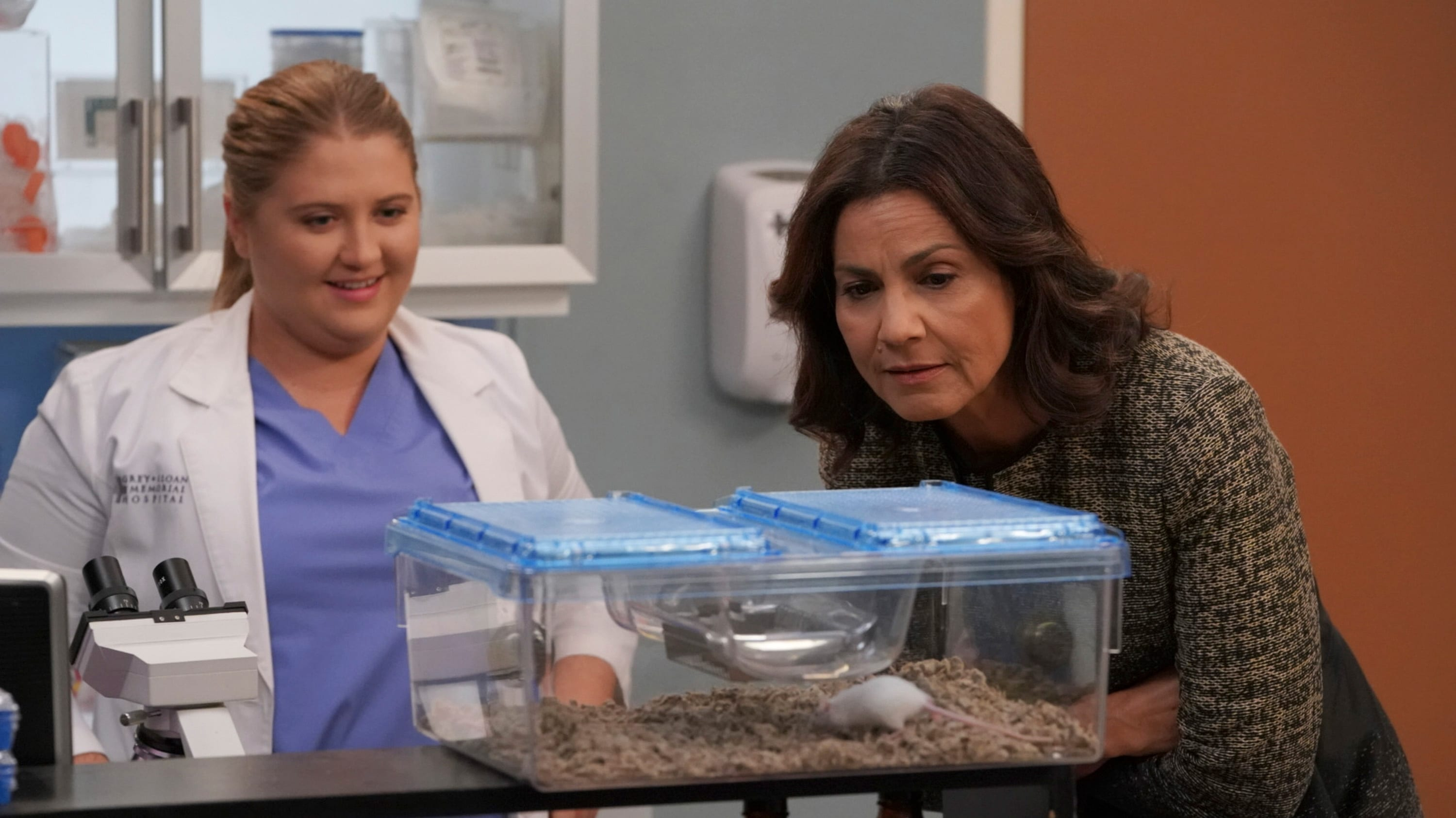 Grey's Anatomy Season 14 :Episode 14  Spieleabend