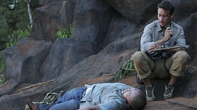 Hawaii Five-0 - Season 1 Episode 20 : Shore