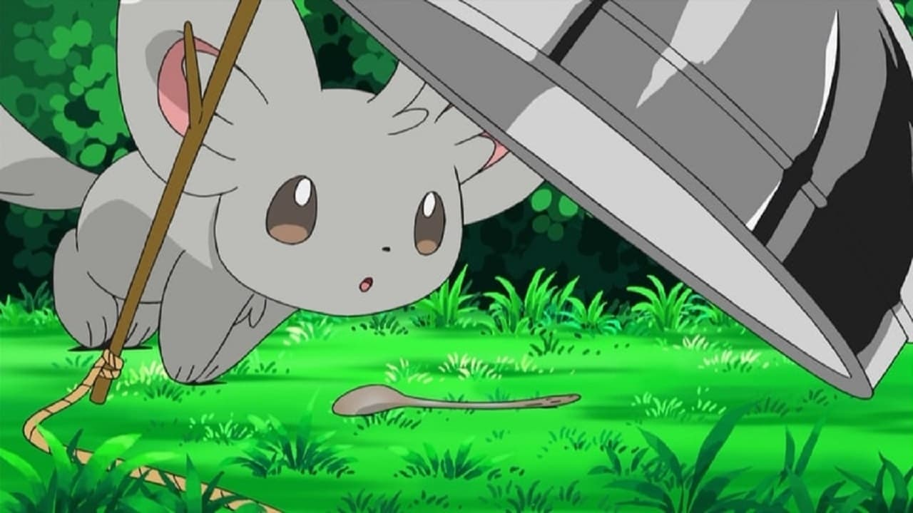 Pokémon Season 14 :Episode 13  Minccino–Neat and Tidy!