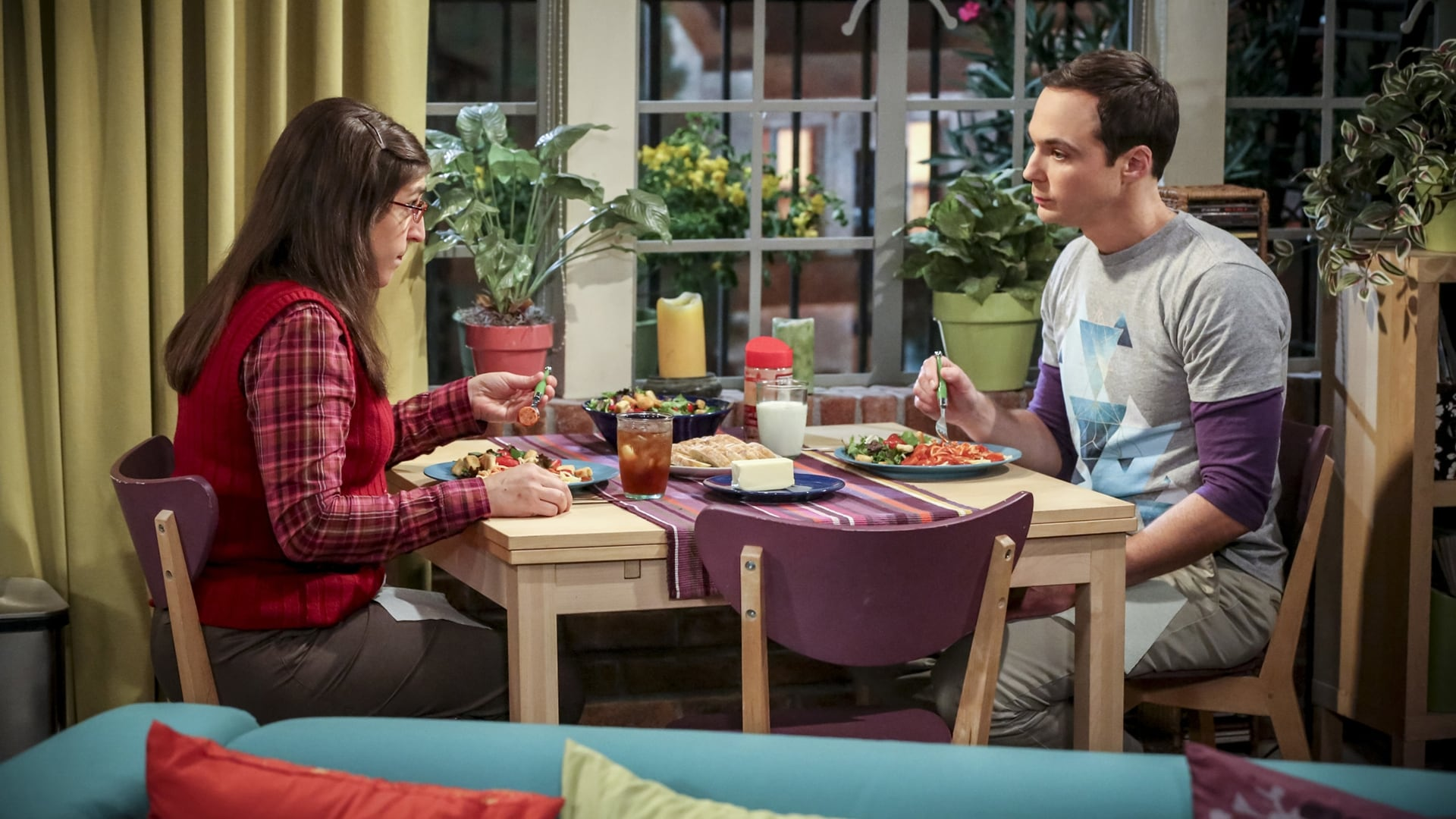 The Big Bang Theory Season 10 : The Fetal Kick Catalyst