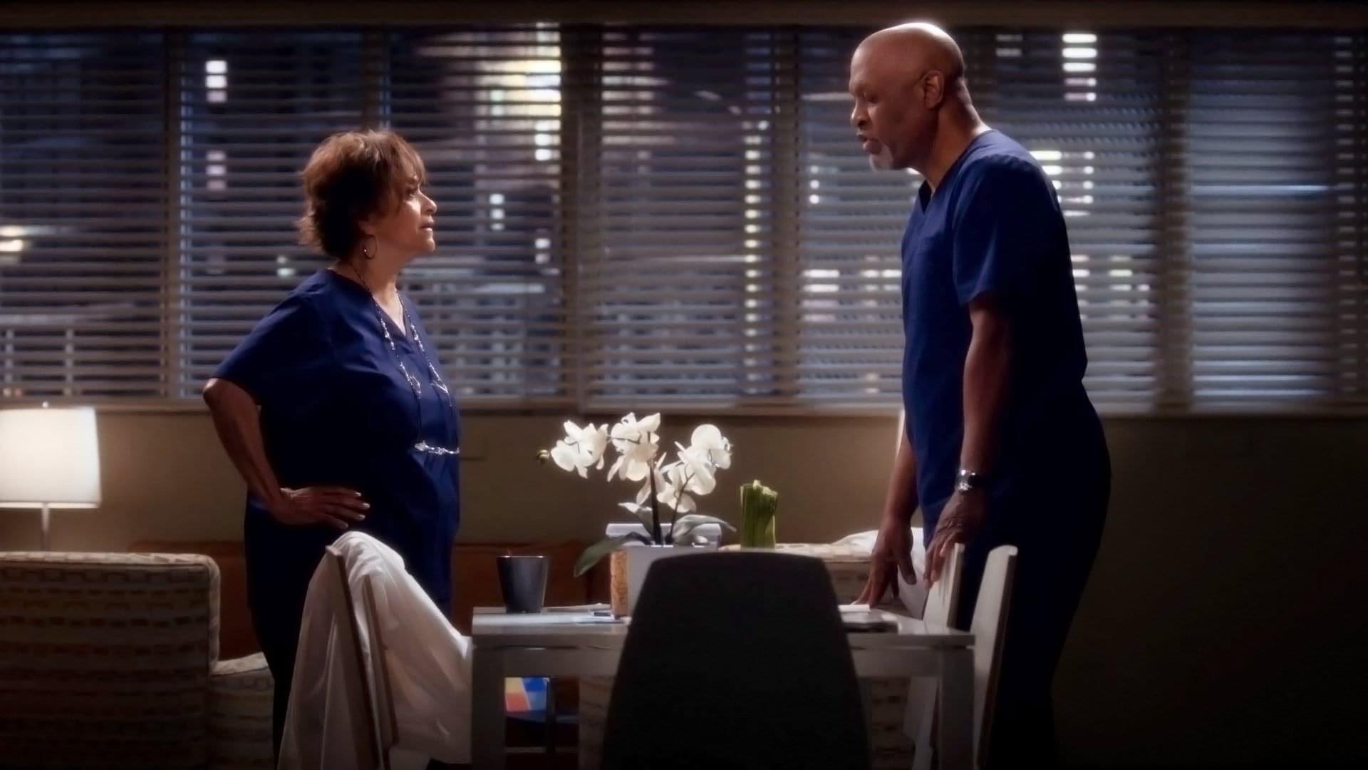 Grey's Anatomy Season 11 :Episode 25  Episode 25