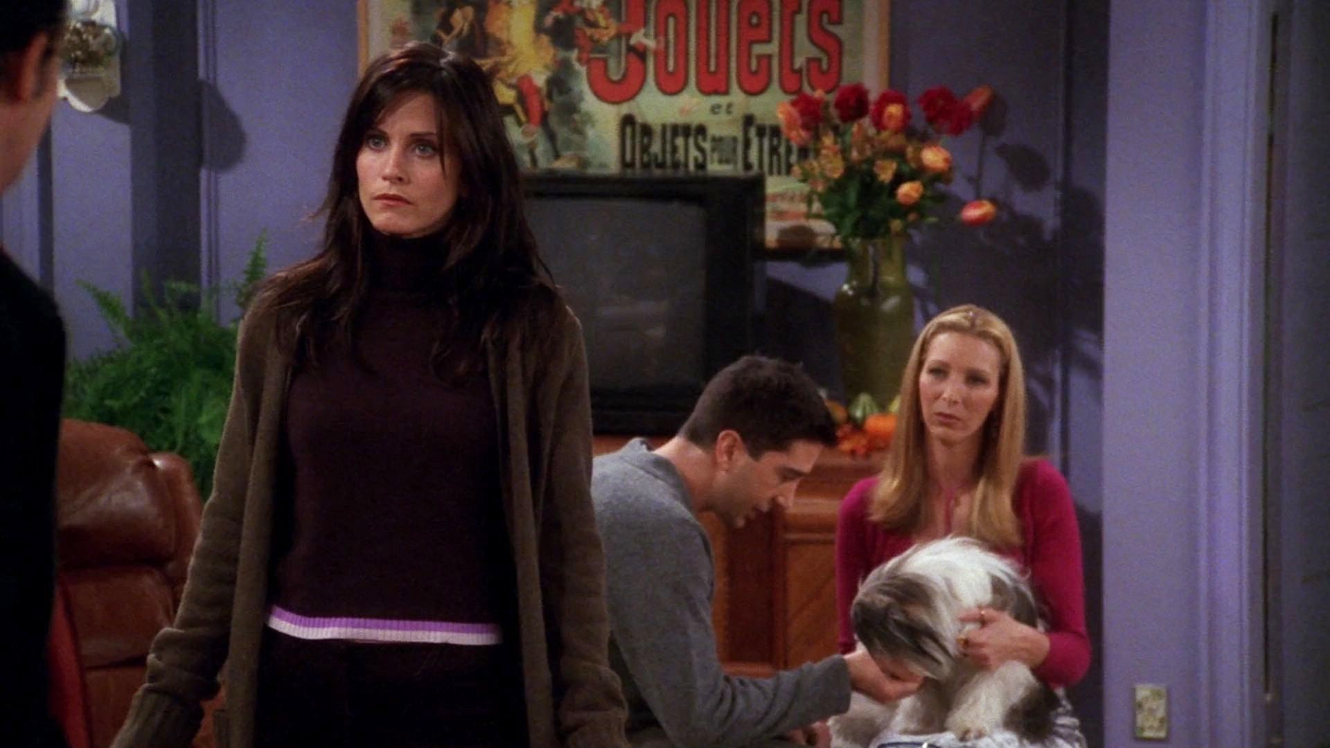 Friends Season 7 :Episode 8  The One Where Chandler Doesn't Like Dogs