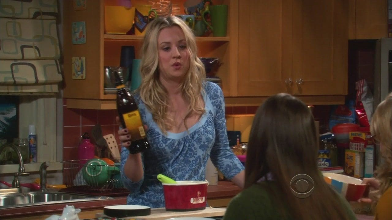 The Big Bang Theory Season 4 :Episode 19  The Zarnecki Incursion