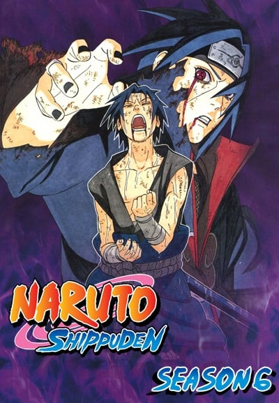 Naruto Shippuden 6º Temporada (2007) Blu-Ray 720p Download Torrent Legendado