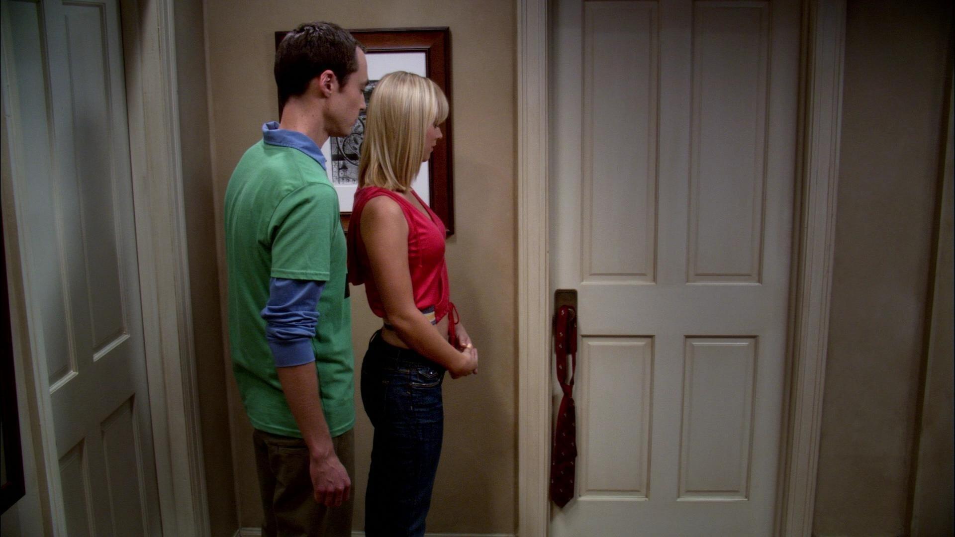 The Big Bang Theory Season 1 :Episode 5  The Hamburger Postulate
