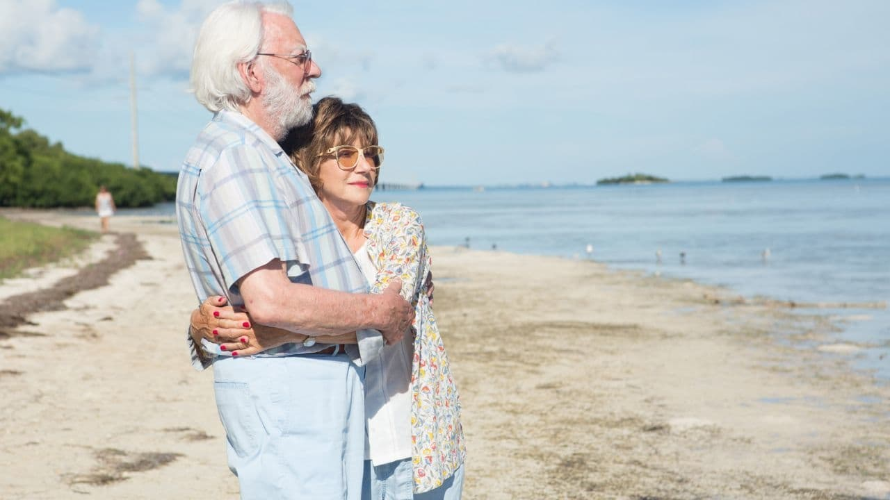 The Leisure Seeker [2017]