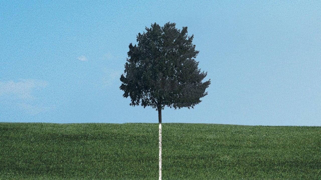 cover-A dos metros bajo tierra