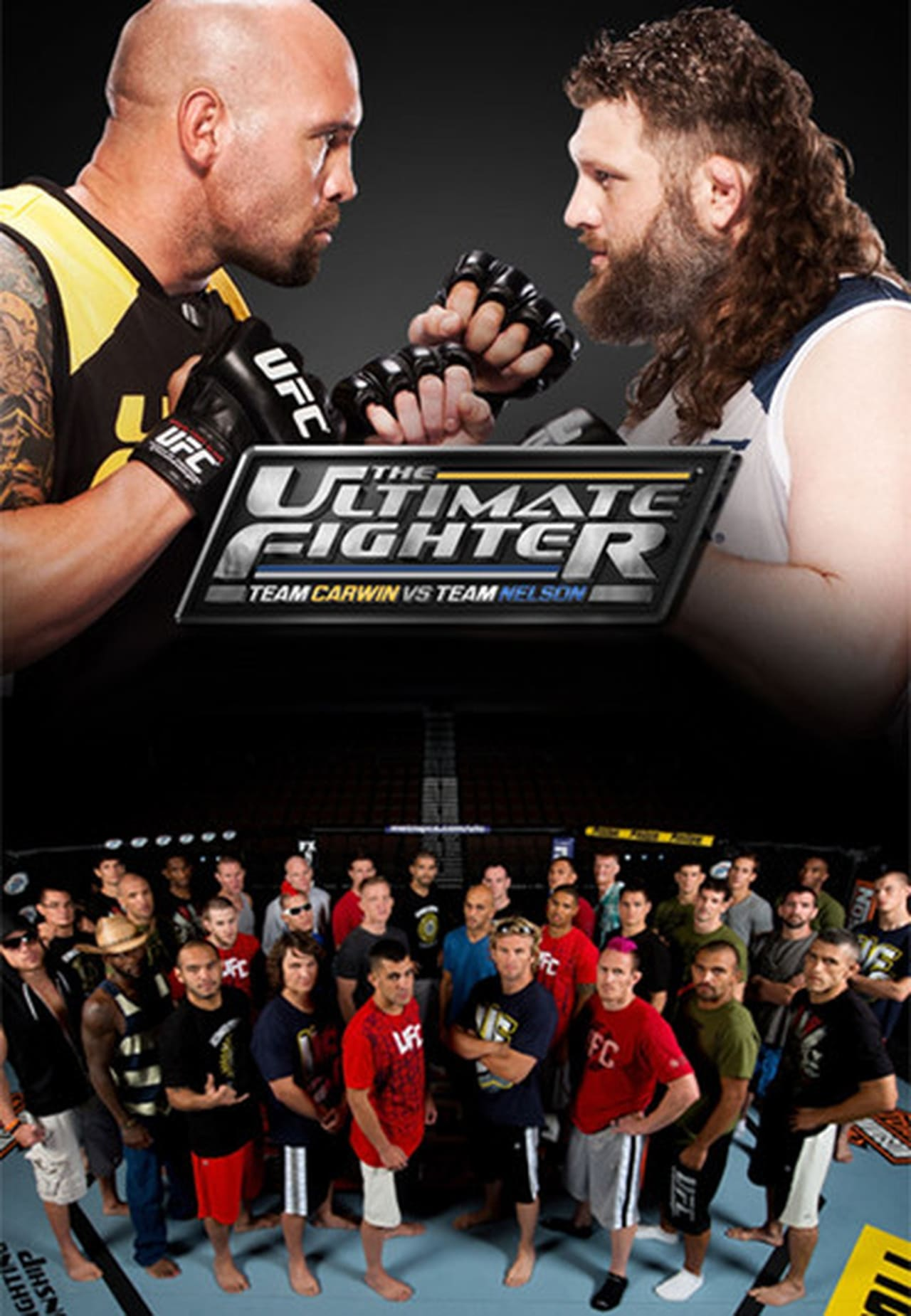 Watch The Ultimate Fighter Season 16 Online