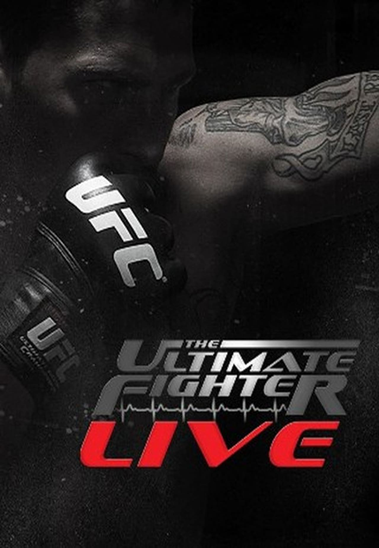 Watch The Ultimate Fighter Season 15 Online