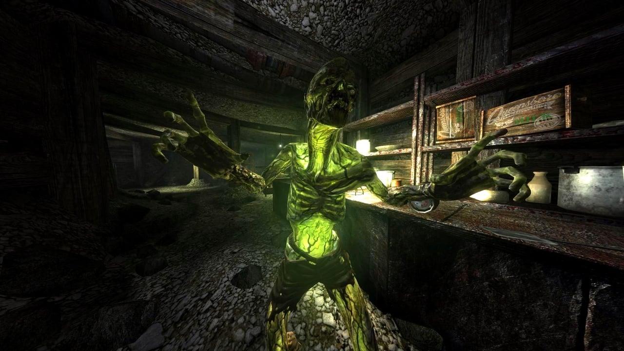 Ver Fallout 3