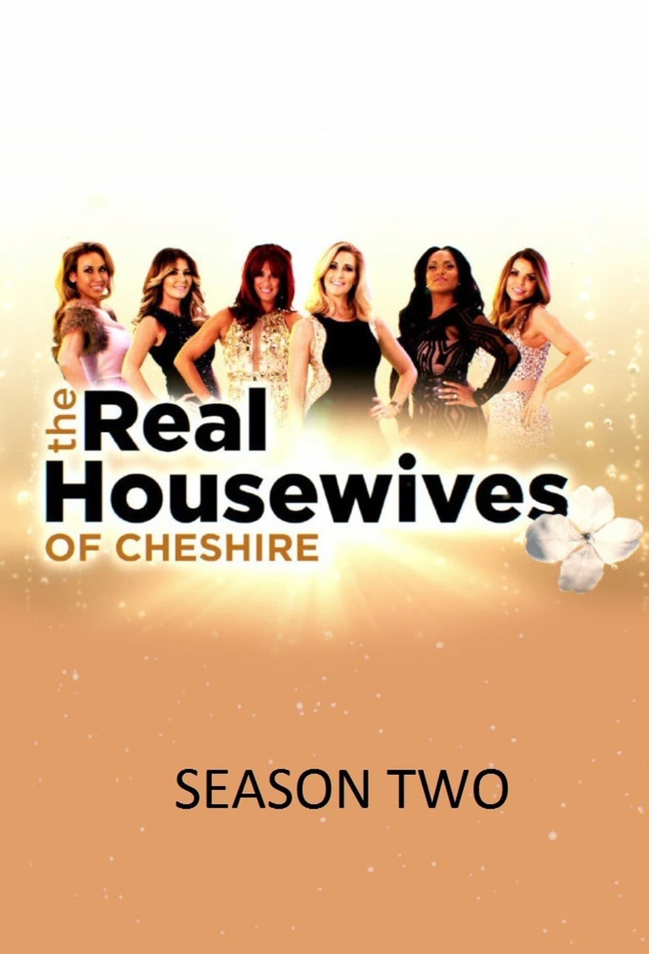 Putlocker The Real Housewives Of Cheshire Season 2 (2015)
